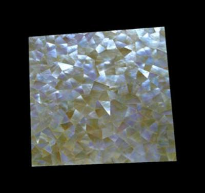 Buy Natural Mother Pearl Tile Interior
