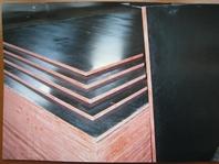 Buy Phenolic Plywood