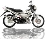 Buy Kawasaki Fury 125 motorcycle