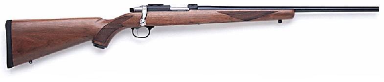 Ruger 77/22RH gun