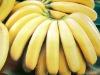 Buy High Quality Fresh Banana