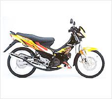 Kawasaki Leostar SSR motorcycle