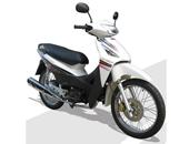 Blink 110 motorcycle