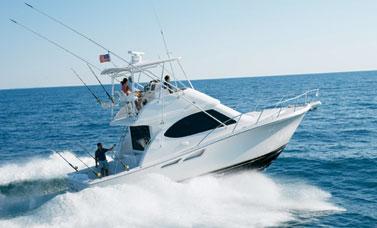 Buy Tiara Convertible 3900 boat