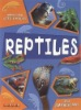 Buy Amazing Life Cycle-Reptiles