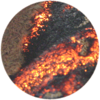 Buy Burning rice husk