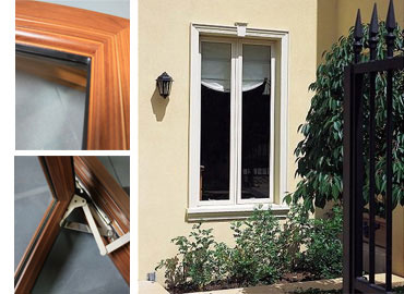 Casement or Awning Windows