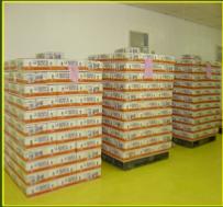Buy Fresh Tropical Fruit Exports