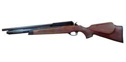 Buy PCP Rifle airguns