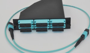 Buy MTP® trunk cables and harnesses
