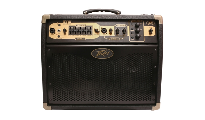 Buy Ecoustic® E110 Acoustic Guitar Amp