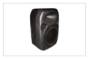 Buy RS-12 speaker system