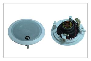 Buy CS-06P-10 speaker system