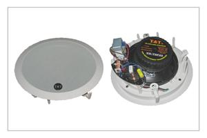 Buy CS-T8P20 speaker system