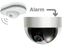 Buy AVM722K IP IVS Network Camera's