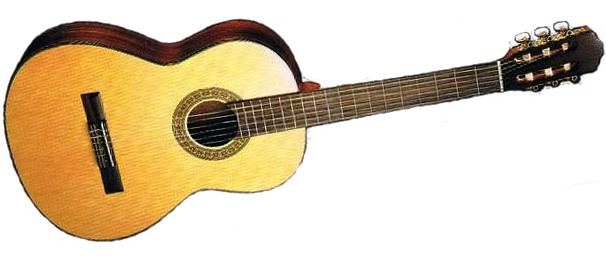 Buy RJ SP-21N Guitars