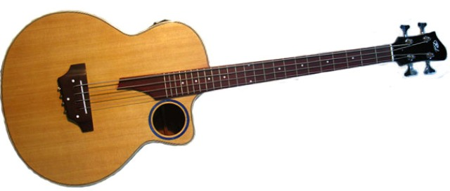 Buy RJ CMB-001 Acoustic Bass Guitar