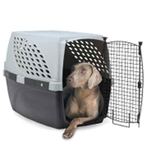 Buy Multi-Use Crate