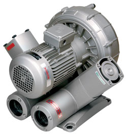 Buy 2-Stage Regenerative Blowers