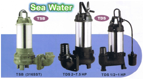 Buy Tsunami Pumps