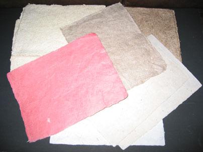 Buy Pulp paper