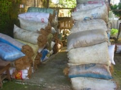 Stockpile of Cocofiber