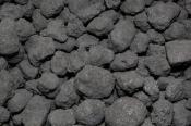 Buy Steam Coal