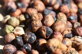 Buy Pop Beans