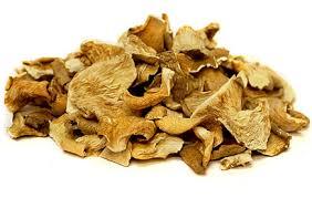 Buy Dried Oyster Mushroom