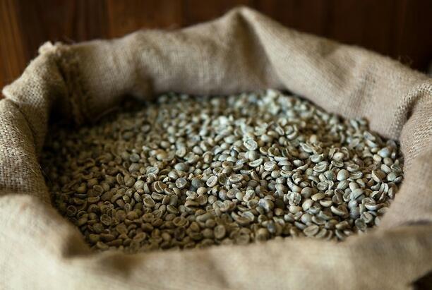 Buy Philippines Arabica Coffee