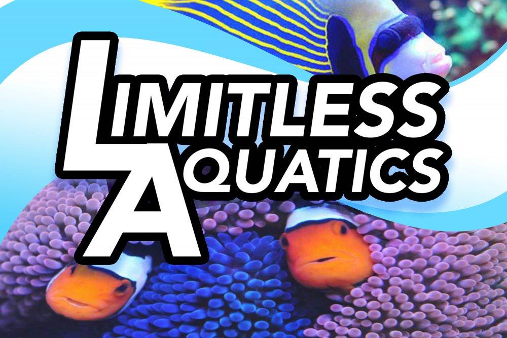 Buy LIMITLESS AQUATICS