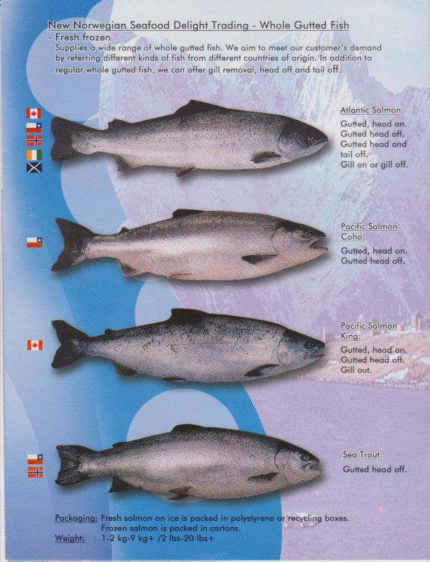 Buy Norwegian pink salmon