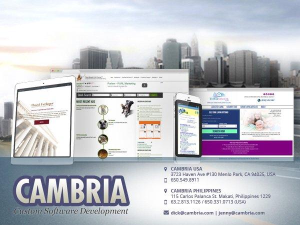 Buy Web Application Development