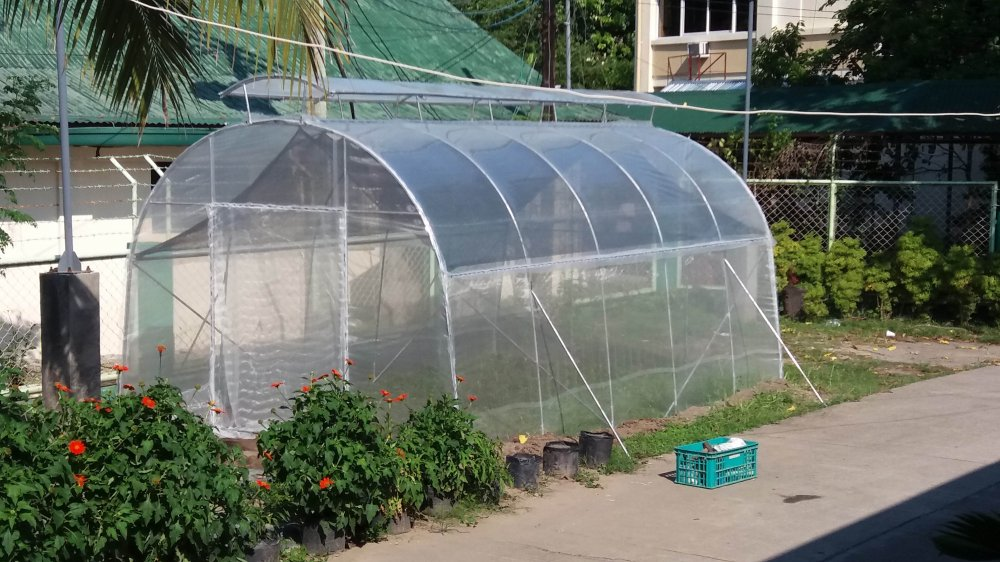 Buy Small Greenhouse Low Cost