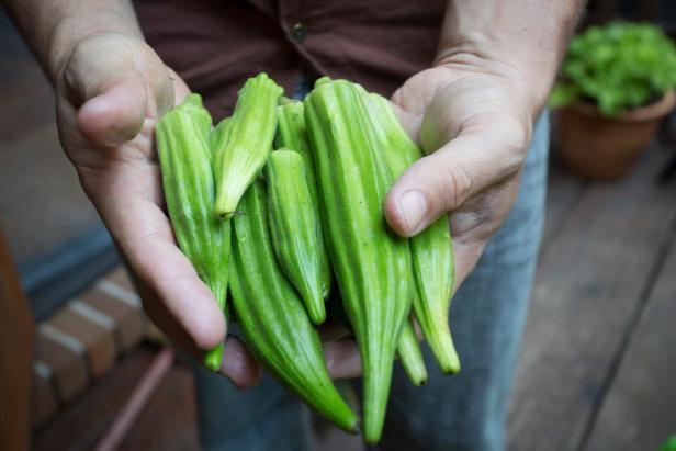 Buy Cheap Fresh Green Okra/Okro For Sales Hot sales