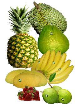 Buy Tropical fruits