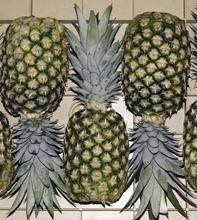 Buy Fresh tropical pineapple