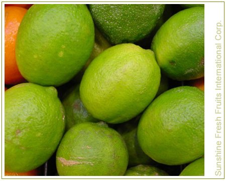 Buy Calamansi Fresh