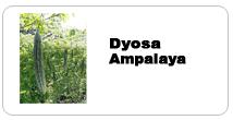 Buy Tropical Seeds Ampalayya
