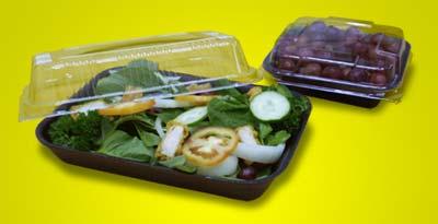Buy Salad Tray & Lid (Big) Salad Tray & Lid (Small)