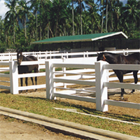 Buy Fencing Products » PVC Ranch Rail