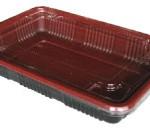 Buy Compartment Bento