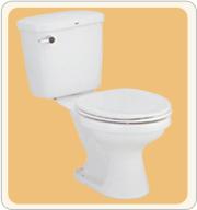 The Toilet C186 Tanya