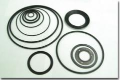 O-rings and Packings for Filter Systems.