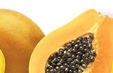 Tropical Fruit Fresh Mango