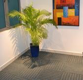 Recreational Flooring