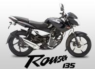 Kawasaki Rouser 135 motorcycle