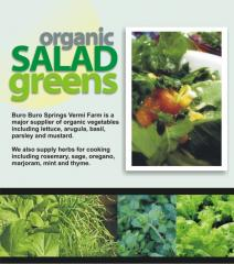 Our Organic Salad Greens, Mesclune