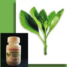 Herbal Supplements Ashitaba