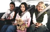 Seatbelt Systems